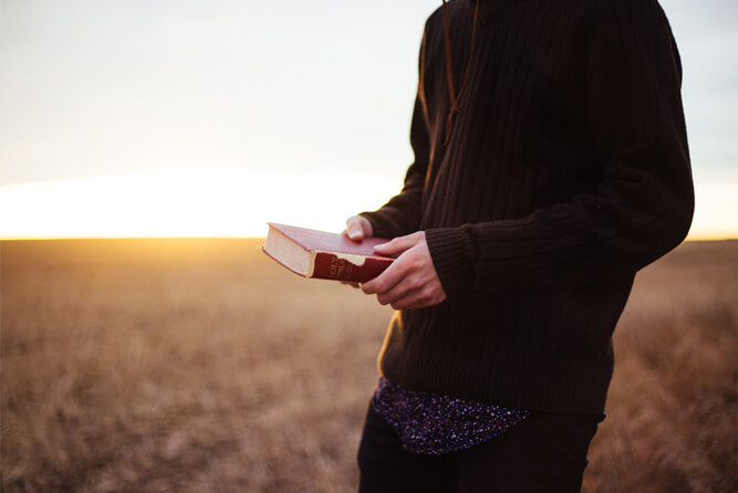 A man in a wheat field with a Bible.